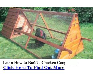 free chicken house