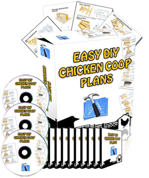 Easy DIY Chicken Coop Plans